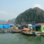 Ba Hang Fishing village, Halong Bay, Vietnam