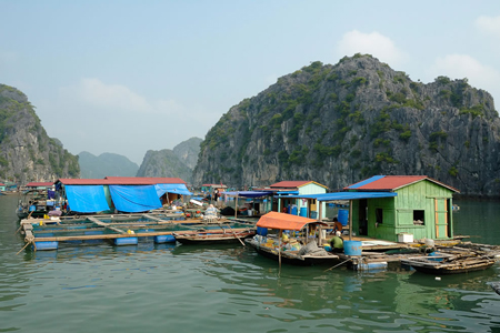 Ba Hang Fishing village, Halong Bay, Vietnam