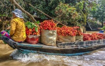 sampa at mekong delta package holidays to vietnam