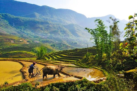 Beautiful scenery of Muong Hoa Valley