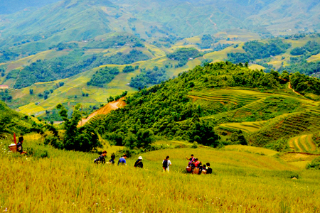 Hike through the paddy fields in Y Linh Ho Village
