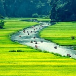 5D/4N Hanoi – Ninh Binh – Halong Bay Muslim Private Package Tour