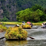 Feedback of Fang Chong on 4D/3N Hanoi – Hoa Lu, Tam Coc Private Package Tour